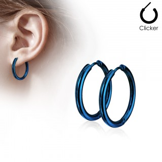 Pair of blue coloured earrings with hinge action