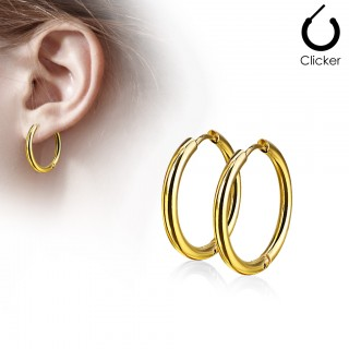 Pair of gold coloured earrings with hinge action