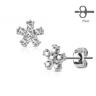 Pair earrings with clear diamond flower