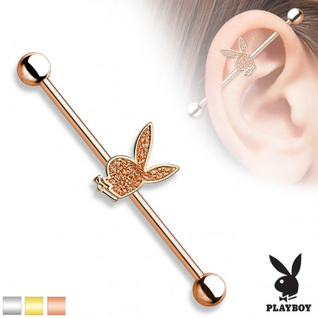 Industrial barbell with glitter Playboy Bunny