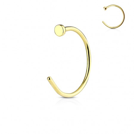 Gold plated nosering