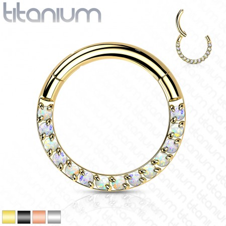 Titanium Hinged Segment Ring with Front-Facing Crystals