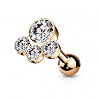 Paw-shaped Coloured Steel Cartilage Stud with 4 Gem Stones