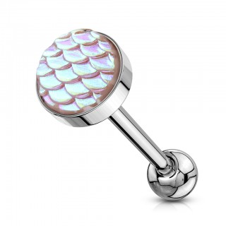 Barbell with top of fish scale flat ball with rainbow effect
