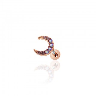 Cartilage stud with horseshoe and coloured crystals