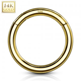14 kt. yellow gold segment ring with hinged segment