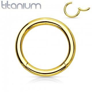 Coloured solid titanium segment ring with attached segment