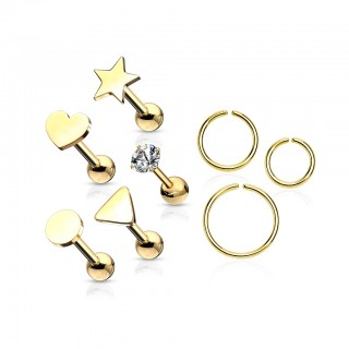 Set of ear cartilage piercings with studs and rings